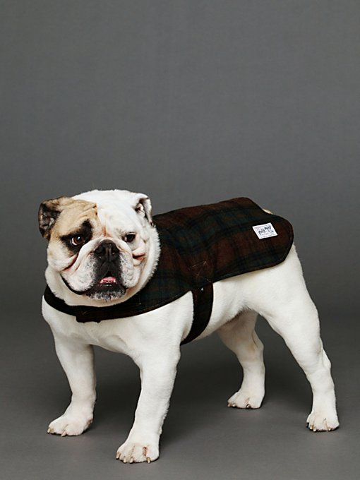 Reversible Rescue Coat in The-Perfect-Present